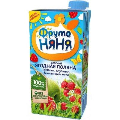 (Упак 25х0,5л) Напиток ФрутоНяня из смеси фруктов и ягод с мятой 0,5 л от 3 лет
